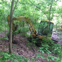 Black Bear Crossing, Maurertown, Virginia Soil Evaluation for Septic System Location