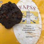 Volcanic Activity in Virginia